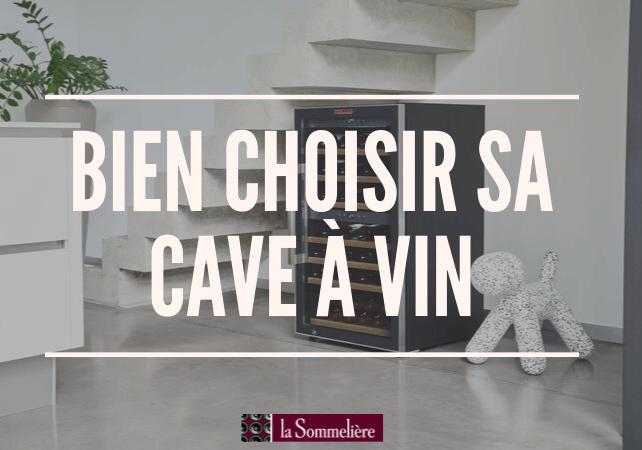 Comment choisir une cave à vin, quelles questions se poser ?